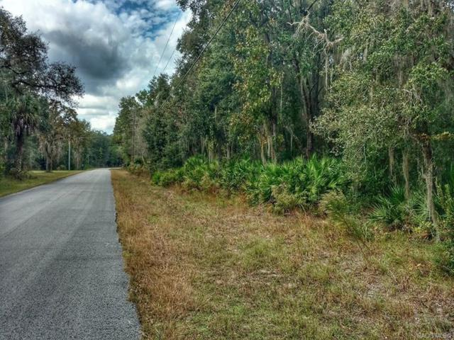 9233 W Chata Place, Crystal River, FL 34428 (MLS #778909) :: Plantation Realty Inc.