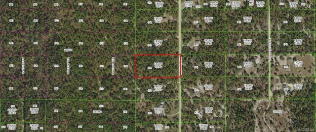 6604 N Khyber Avenue, Dunnellon, FL 34433 (MLS #778917) :: Plantation Realty Inc.