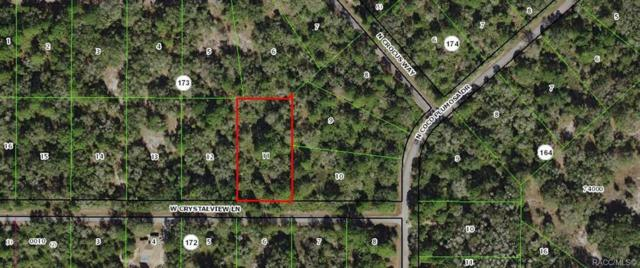 12651 W Crystalview Lane, Crystal River, FL 34428 (MLS #778922) :: Plantation Realty Inc.