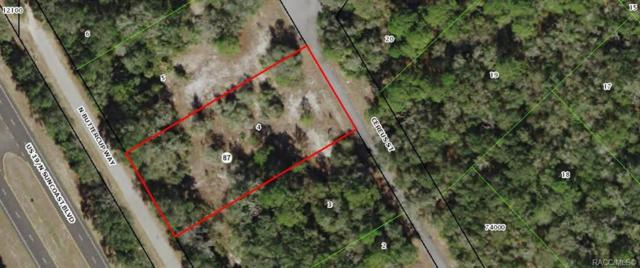 9305 N Buttercup Way, Crystal River, FL 34428 (MLS #778924) :: Plantation Realty Inc.