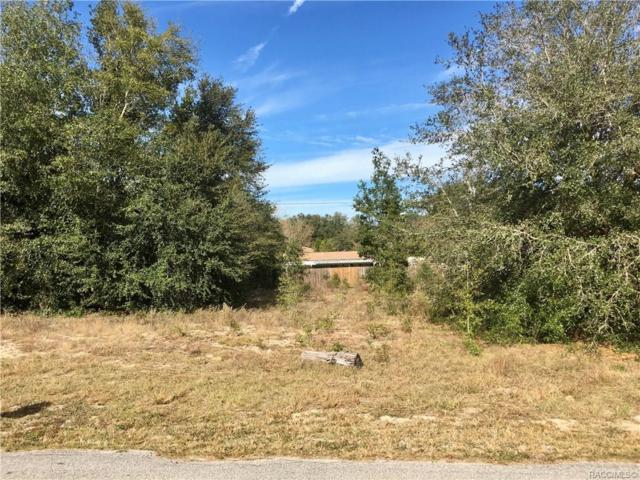 LOT 20 SW 84 Street, Dunnellon, FL 34431 (MLS #778942) :: Plantation Realty Inc.