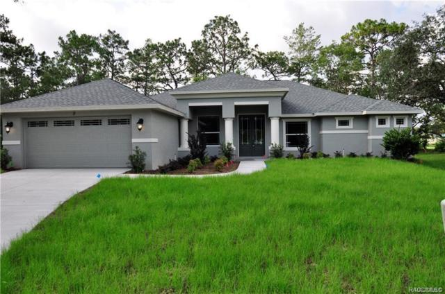 9 Graytwig Court S, Homosassa, FL 34446 (MLS #778949) :: Plantation Realty Inc.