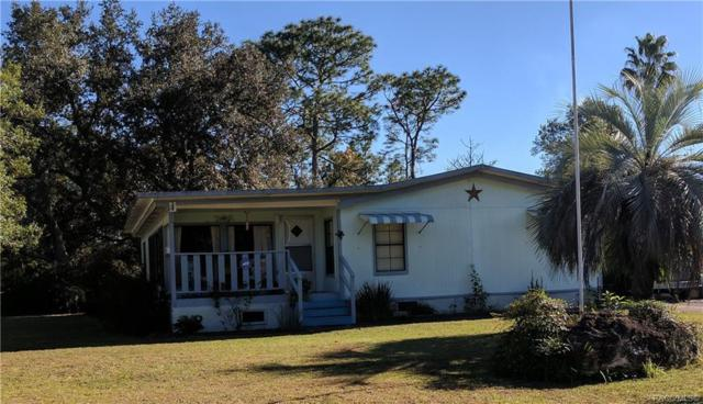 1935&1931 S Overview Drive, Lecanto, FL 34461 (MLS #778971) :: Plantation Realty Inc.