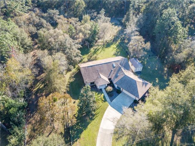 4587 N Buffalo Drive, Beverly Hills, FL 34465 (MLS #778983) :: Plantation Realty Inc.