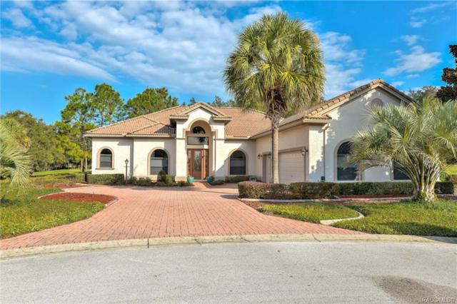 1998 N Ramblewood Point, Hernando, FL 34442 (MLS #778989) :: Plantation Realty Inc.