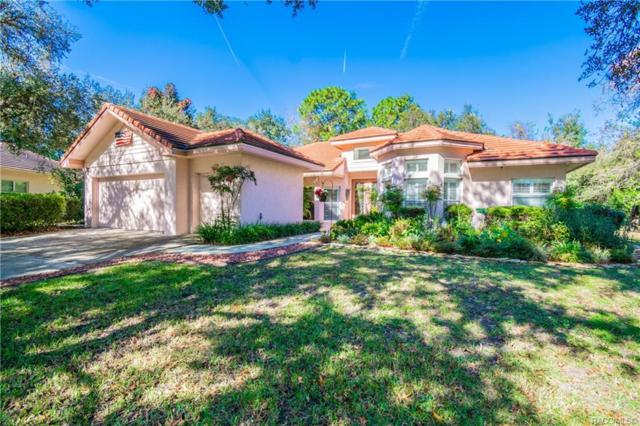 2885 W Crooked Stick Court, Lecanto, FL 34461 (MLS #778997) :: Plantation Realty Inc.