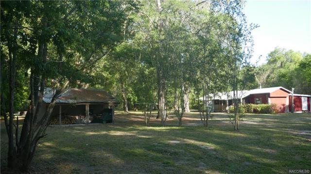 2243 E Maryann Lane, Hernando, FL 34442 (MLS #779003) :: Plantation Realty Inc.