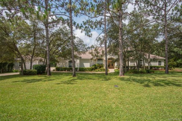 2058 W Tall Oaks Drive, Beverly Hills, FL 34465 (MLS #779004) :: Plantation Realty Inc.