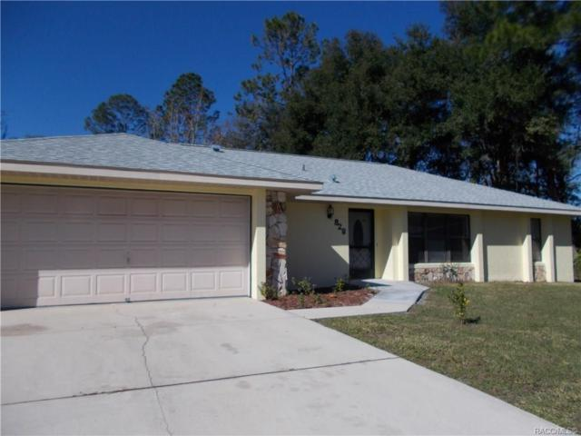 828 Sweet Pine Point, Inverness, FL 34452 (MLS #779009) :: Plantation Realty Inc.