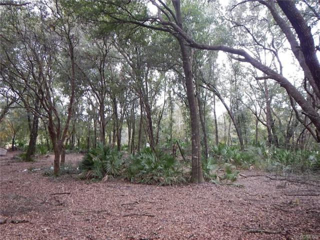 9048 E Turner Camp Road, Inverness, FL 34453 (MLS #779013) :: Plantation Realty Inc.