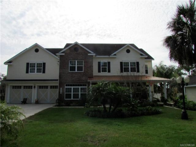 20946 River Drive, Dunnellon, FL 34431 (MLS #779028) :: Plantation Realty Inc.