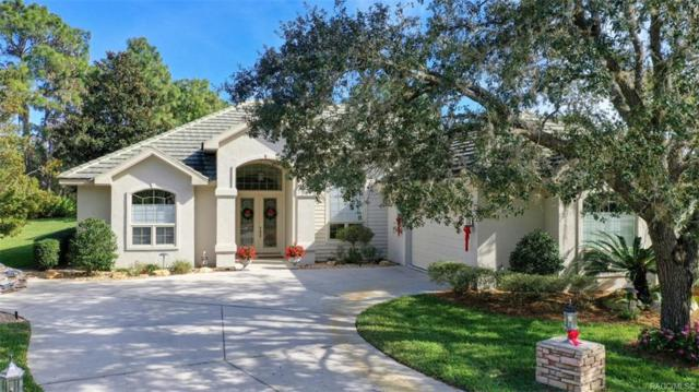 3861 N Baltusrol Path, Lecanto, FL 34461 (MLS #779029) :: Plantation Realty Inc.