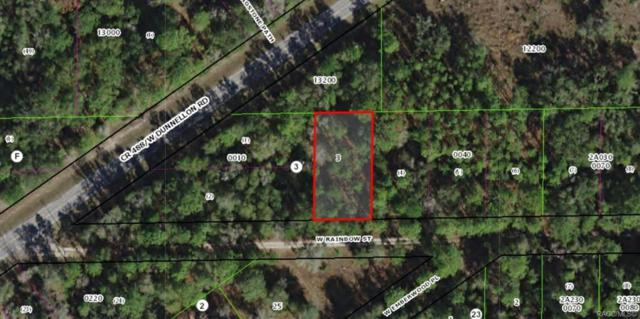 7277 W Rainbow Street, Dunnellon, FL 34433 (MLS #779031) :: Plantation Realty Inc.