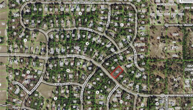 1797 E Hartford Street, Inverness, FL 34453 (MLS #779034) :: Plantation Realty Inc.