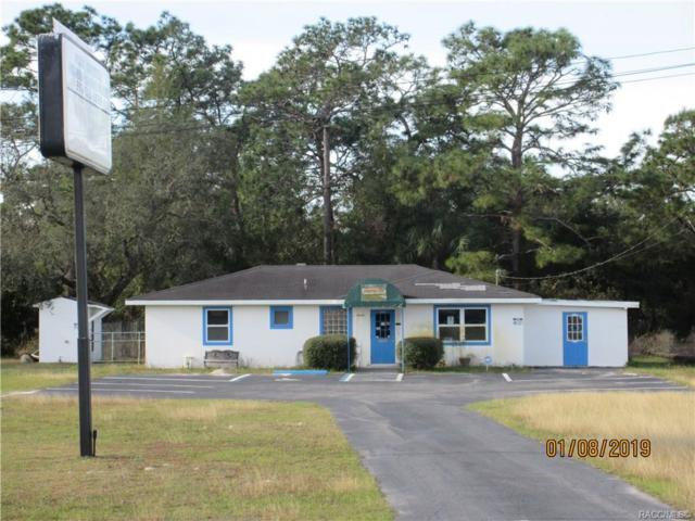 5730 S Suncoast Boulevard, Homosassa, FL 34446 (MLS #779036) :: Plantation Realty Inc.