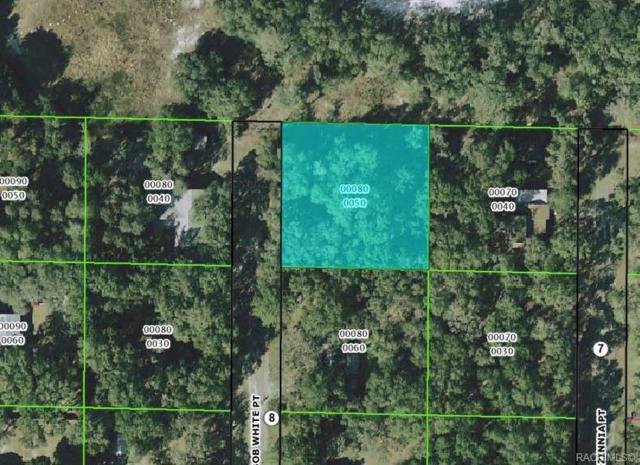 193 N Bobwhite Point, Inverness, FL 34453 (MLS #779043) :: Plantation Realty Inc.