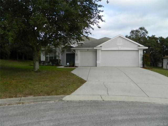 71 N Youngtree Point, Lecanto, FL 34461 (MLS #779048) :: Plantation Realty Inc.