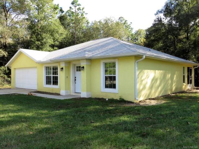 2280 W Sheila Drive, Citrus Springs, FL 34434 (MLS #779068) :: Pristine Properties