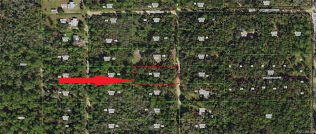 280 N Candle Point, Crystal River, FL 34429 (MLS #779089) :: Plantation Realty Inc.