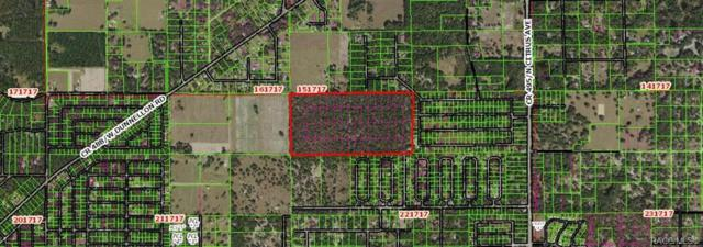 8779 N Fauci Point, Crystal River, FL 34428 (MLS #779105) :: Plantation Realty Inc.