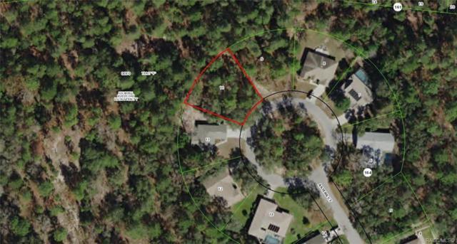 17 Asters Court, Homosassa, FL 34446 (MLS #779122) :: Plantation Realty Inc.