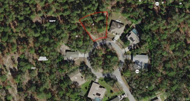 18 Asters Court, Homosassa, FL 34446 (MLS #779123) :: Plantation Realty Inc.