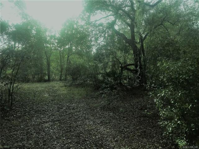 451-453 SW Shorewood Drive, Dunnellon, FL 34431 (MLS #779125) :: Plantation Realty Inc.