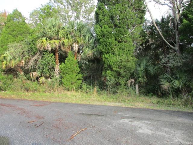 169 N Country Club Drive, Crystal River, FL 34429 (MLS #779145) :: Plantation Realty Inc.