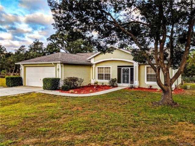 473 N Zebrawood Point, Lecanto, FL 34461 (MLS #779148) :: Plantation Realty Inc.