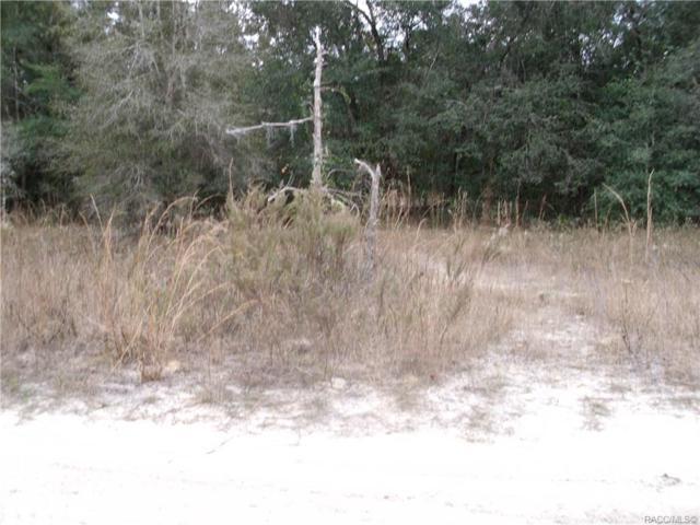2905 Polk St W Street, Inverness, FL 34453 (MLS #779149) :: Plantation Realty Inc.