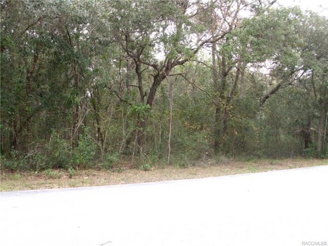 682 S Lukie Ave Avenue, Inverness, FL 34453 (MLS #779152) :: Plantation Realty Inc.