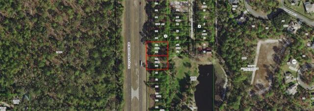 11195 S Suncoast Boulevard, Homosassa, FL 34446 (MLS #779154) :: Plantation Realty Inc.