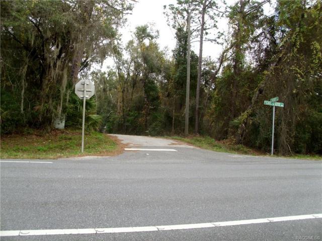 3441 E. Ivory Lane Lane, Hernando, FL 34442 (MLS #779155) :: Plantation Realty Inc.
