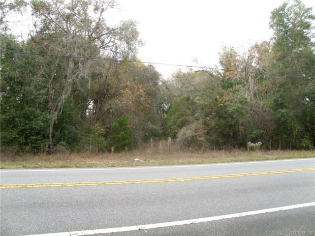 5476 North Carl G. Rose Hwy Highway, Hernando, FL 34442 (MLS #779158) :: Plantation Realty Inc.