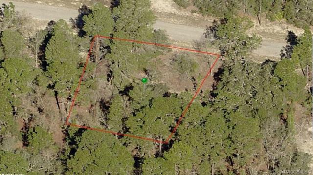 2810 W Huron Lane, Citrus Springs, FL 34434 (MLS #779162) :: Pristine Properties