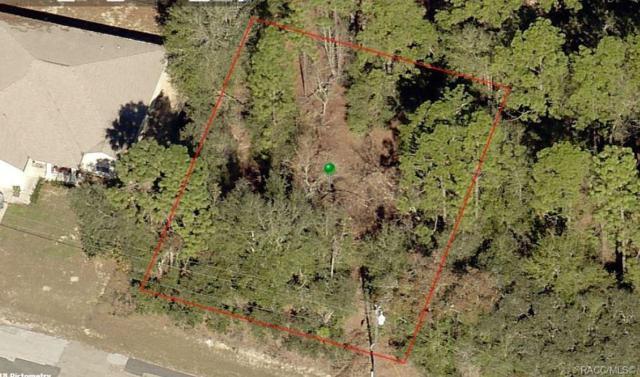 2255 W Ingrid Lane, Citrus Springs, FL 34434 (MLS #779165) :: Pristine Properties