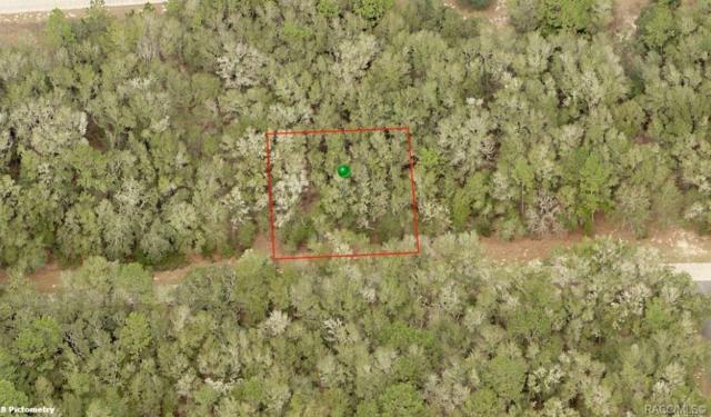 1732 E Derby Drive, Citrus Springs, FL 34434 (MLS #779169) :: Pristine Properties