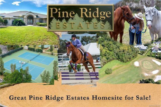 5156 N Elkcam Boulevard, Beverly Hills, FL 34465 (MLS #779177) :: Pristine Properties