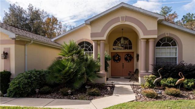 32 Redbay Court W, Homosassa, FL 34446 (MLS #779201) :: Plantation Realty Inc.
