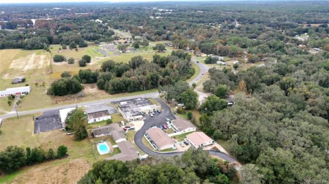 20 N Sheltering Oaks Drive, Inverness, FL 34453 (MLS #779202) :: Plantation Realty Inc.