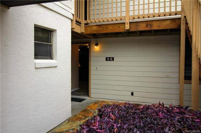 195 E Hartford Street 3A, Bldg 7, Hernando, FL 34442 (MLS #779271) :: Plantation Realty Inc.