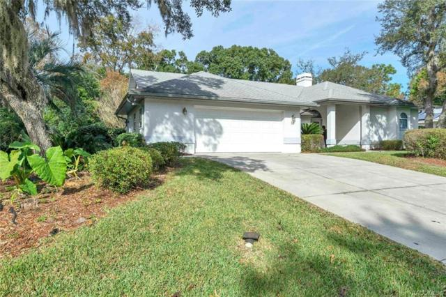 18 Linder Drive, Homosassa, FL 34446 (MLS #779286) :: Plantation Realty Inc.