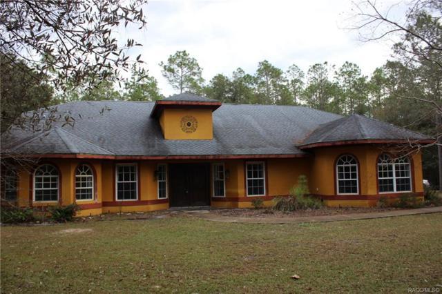 21680 SW 84th Loop, Dunnellon, FL 34431 (MLS #779296) :: Plantation Realty Inc.