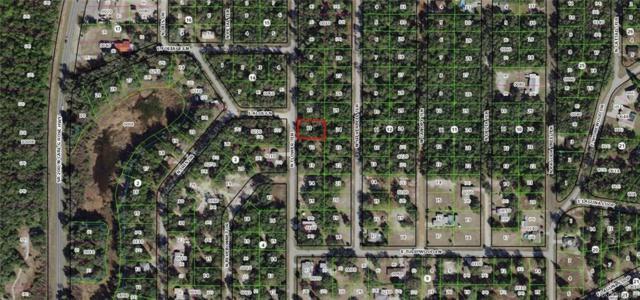 6537 N Flower Terrace, Hernando, FL 34442 (MLS #779297) :: Pristine Properties