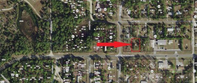 7303 W Homosassa Trail, Homosassa, FL 34448 (MLS #779302) :: Plantation Realty Inc.