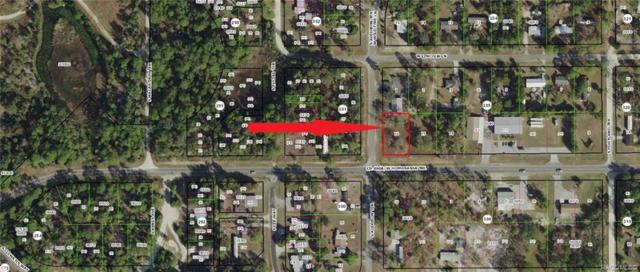 7317 W Homosassa Trail, Homosassa, FL 34448 (MLS #779303) :: Plantation Realty Inc.