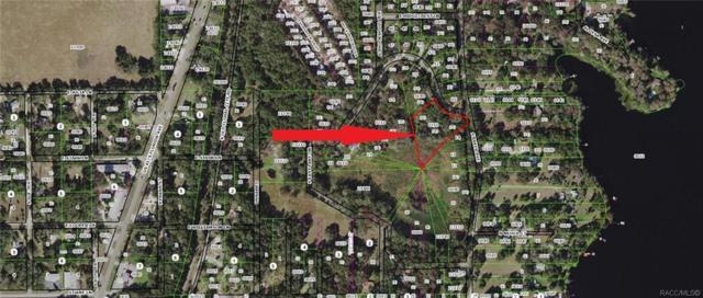 7270 S Baker Avenue, Floral City, FL 34436 (MLS #779313) :: Plantation Realty Inc.