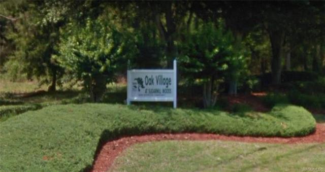 162 Daisy Street, Homosassa, FL 34446 (MLS #779314) :: Plantation Realty Inc.