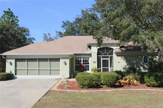 24 Woodfield Circle, Homosassa, FL 34446 (MLS #779377) :: Plantation Realty Inc.