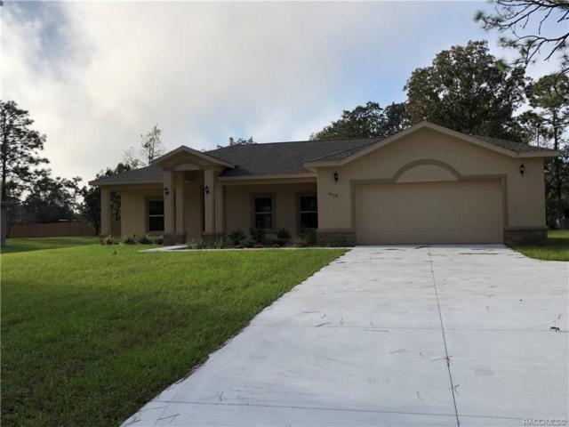 295 N Independence Highway, Inverness, FL 34453 (MLS #779392) :: Plantation Realty Inc.